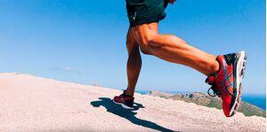 Школа бега: правильная техника бега